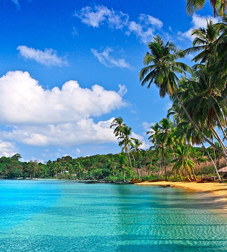 Best-Selling Goa Tour Package